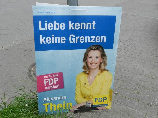 Выборы 25 мая в ЕС Скандал вокруг любви без границ